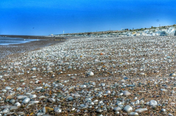 Pebbled Beaches - I love the tones and colours in this one